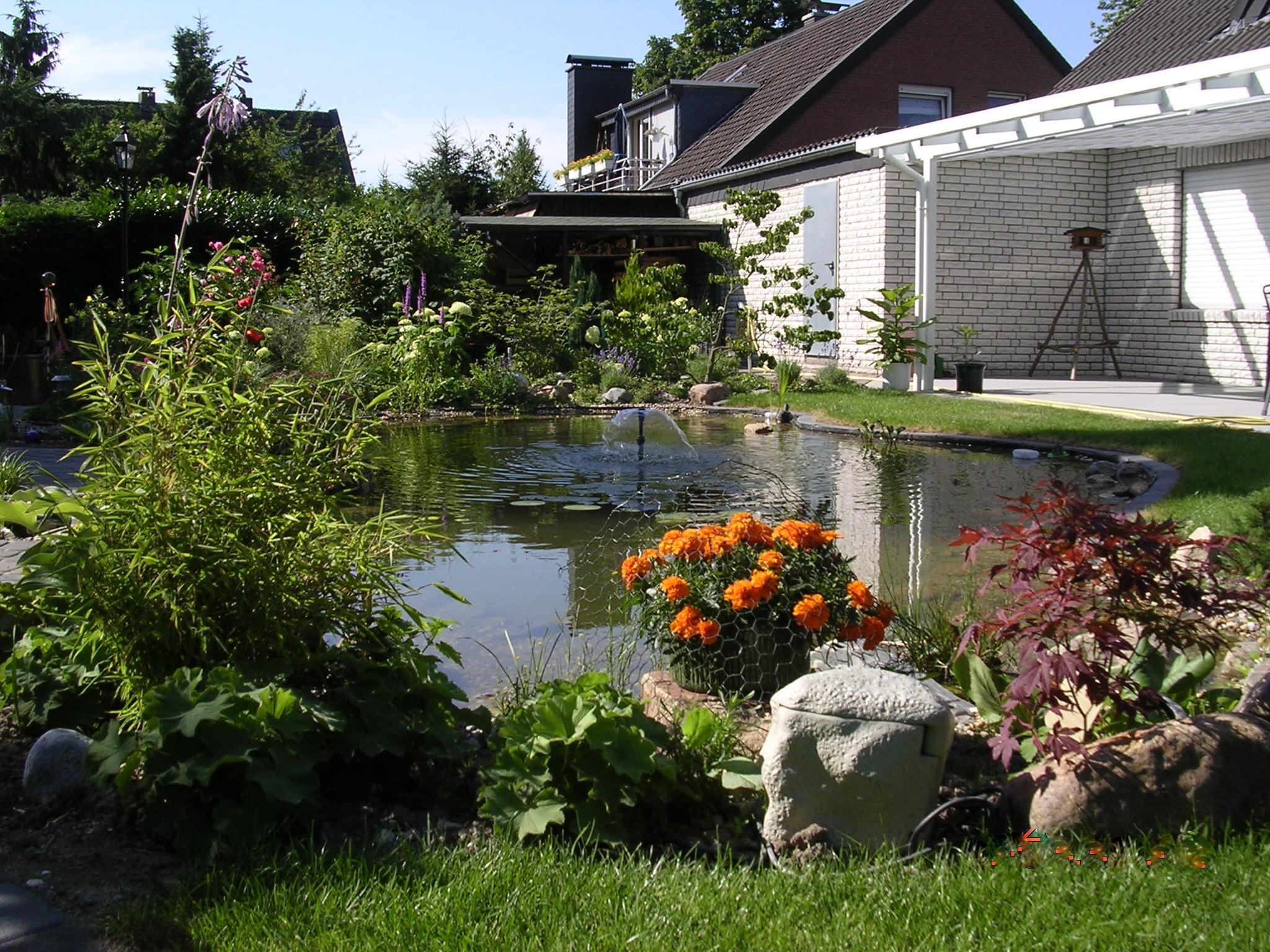 Teichanlage in Krefeld Kliedbruch