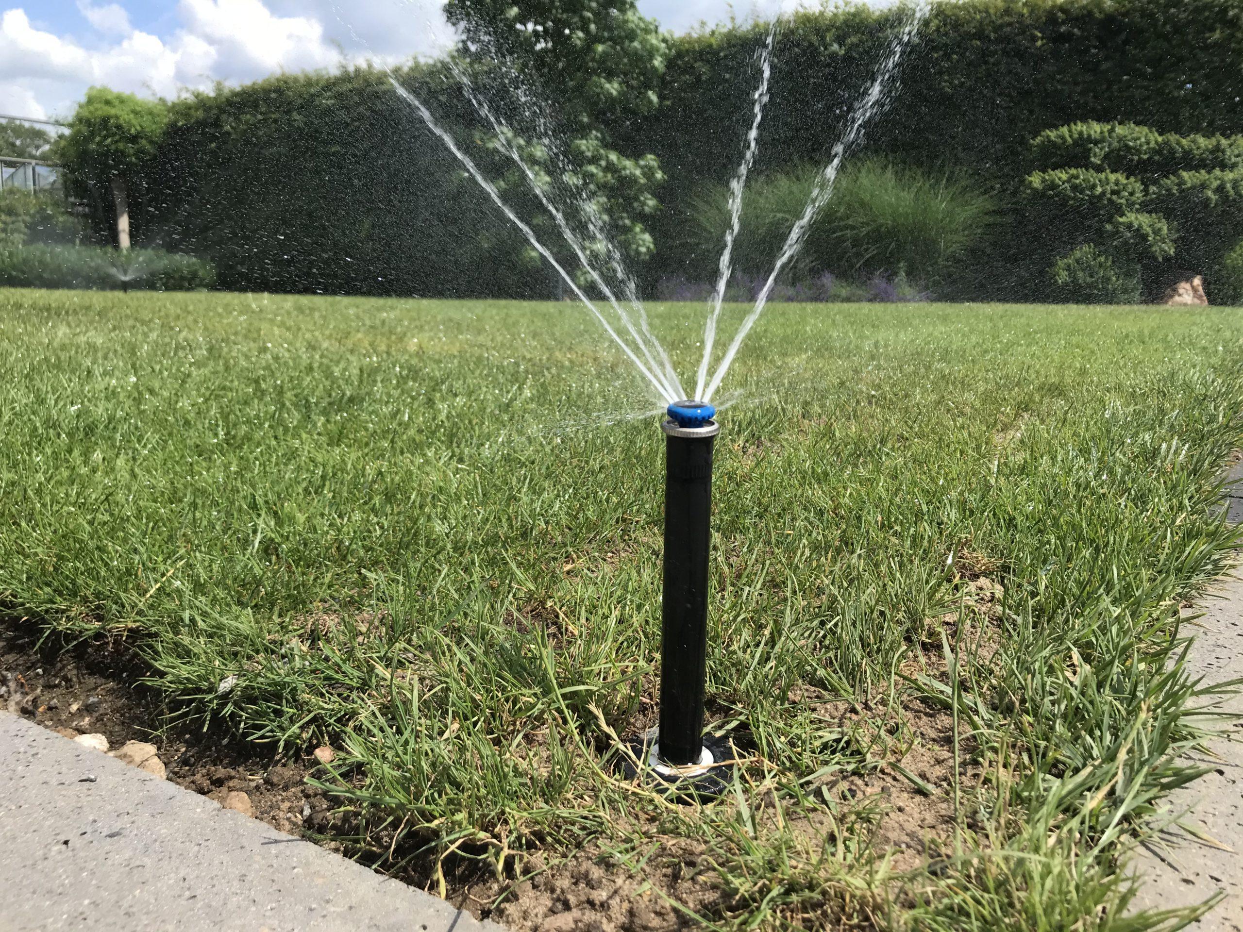 Bewässerung Rainbird (11)